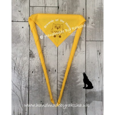 'Guide of the Month/term/camp' Scarf