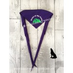 'Scout of the Month/term/camp' Scarf
