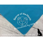 'Beaver of the Month/term/camp' Scarf